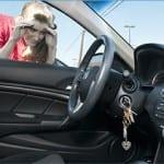 Auto Lockout Service Plainfield, IL